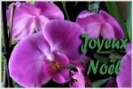 joyeux-noel_08.jpg