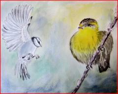 oiseaux_2w.jpg